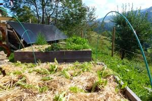 permaculture dans le cantal